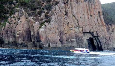塔斯曼島遊船 Tasman Island Cruises.塔斯曼尼亞自由行