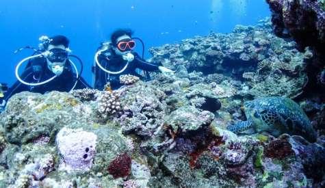 石垣島潛水.日本最佳潛水地區.石垣島自由行